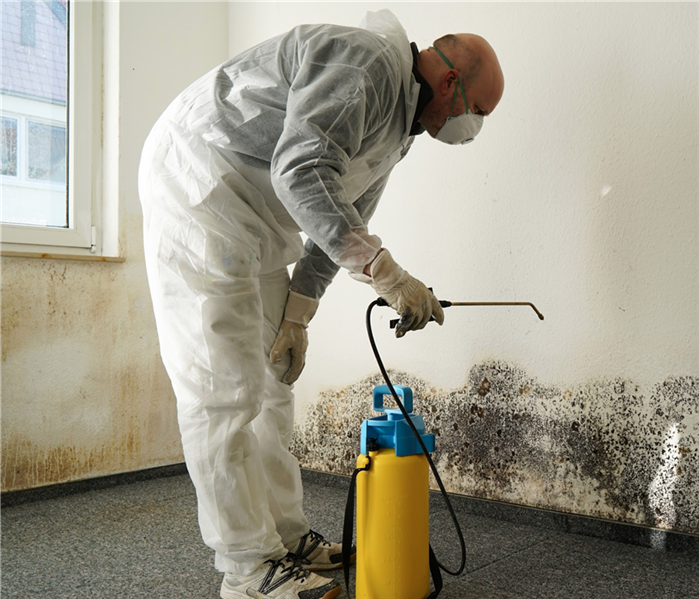 Specialist wearing protective clothing during mold cleaning