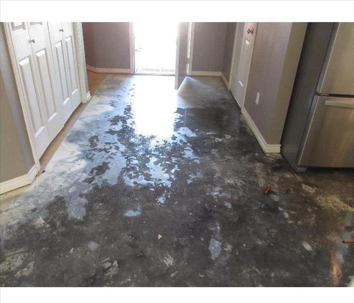 Water Damage Do You Understand the Three Types of Water Contamination?