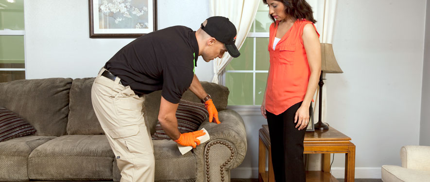 Bryan, TX carpet upholstery cleaning