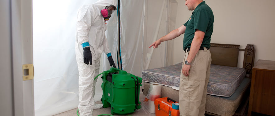 Bryan, TX mold removal process